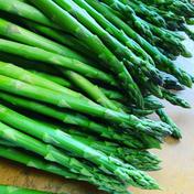 甘っ!シャキッ!ジューシーなアスパラLM1キロ LM1キロ 野菜(アスパラガス) 通販