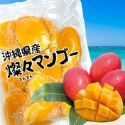 【沖縄県産】冷凍 燦々マンゴー(ハーフカット)【業務用・無添加・保存料不使用】 1kg 果物(マンゴー) 通販