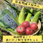 いいとこよりどりセット💕👩🌾プレゼント用にも対応します☺️ 大玉トマト2袋(約6個)、ミニトマト1パック(約15個)、白とうもろこし5本、小松菜2袋、ジャガイモ1キロ 果物や野菜などのお取り寄せ宅配食材通販産地直送アウル