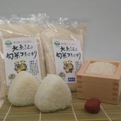 魚沼産旬米コシヒカリ      300g袋 300g×10袋 新潟県 通販