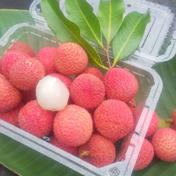 加計呂麻島のライチ 500g 500g 果物や野菜などのお取り寄せ宅配食材通販産地直送アウル