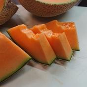 大玉2個赤肉メロン7月~8月 4kg~4.3kg 果物や野菜などのお取り寄せ宅配食材通販産地直送アウル