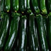 ズッキーニ 傷なしA品 Lサイズ 10本 常温発送 送料無料 2キロ以上 果物や野菜などのお取り寄せ宅配食材通販産地直送アウル