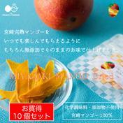 【お買い得】〜宮崎マンゴーをいつでもどこでも気軽に〜MIYAZAKI MANGO Dried〜【ドライマンゴー・送料最安】 12g×10個 果物や野菜などのお取り寄せ宅配食材通販産地直送アウル