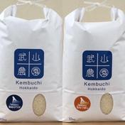 【送料込】精米ゆめぴりか10kg+ななつぼし10kg 令和2年産 20kg(10kg+10kg) 米(セット・詰め合わせ) 通販