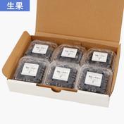 ブルーベリー生果実【Mixサイズ・600g】 600g 果物 通販