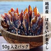干しほたるいか 50g入2パック 福井県 通販