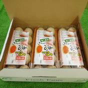 アスタキサンチンを飼料に添加 「平飼い卵」 10個入り✖️3パック 1.95Kg 埼玉県 通販