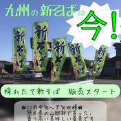 新そば開始!熊本県産の手打ち十割蕎麦!【蕎麦和三郎】 750g(150g×5) 加工品(麺類) 通販