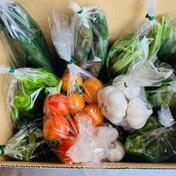 ニンニクとお任せ野菜のセット大(3〜4人用) 3.0kg前後 果物や野菜などのお取り寄せ宅配食材通販産地直送アウル
