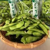 """これがあの彩の国のブランド⁉️茶豆風味の枝豆 """"農カード付き"""" 1.5キロ 野菜(豆類) 通販"""