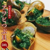 (お届け地域:東北・関東甲信越のみ)天然アワビつぶ貝(ボイル済み/冷凍)500g 500g 魚介類(その他魚介の加工品) 通販