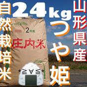 自然栽培 お米の旨味たっぷり氷温熟成 つや姫 令和2年産 山形県産 庄内産 庄内米 玄米 24kg 24kg 山形県 通販