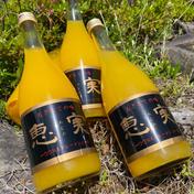 マルユー園の清見オレンジ100%ジュース2本入り720ml 720ml 2本入り 和歌山県 通販