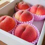 【冷蔵】新婚農家が贈る、WEDDINGピーチ♡【限定10箱】 5~7玉 果物(もも) 通販