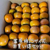 富有柿2Sサイズ詰め合わせセット 30個以上! 約4.5kg-4.7kg 29-31個 岐阜県 通販