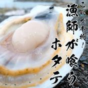 これが本物!漁師が喰うホタテ【1㎏】 ヘラ付き ホタテ1年貝1kg 青森県 通販
