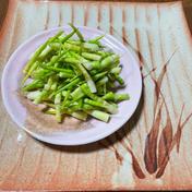 待ちに待った春爛漫の山菜 3種盛りパート2  皮剥きササだけ水煮、アク抜きワラビ、タラの芽 600グラム 山清商店