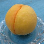 山梨県産 黄金桃3kg《本州専用》 1箱(10個前後) 山梨県 通販