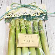 ギフトラッピング♪極太アスパラガス 500g 果物や野菜などのお取り寄せ宅配食材通販産地直送アウル