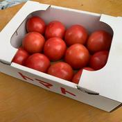 長野県産 信州トマト 2kg箱詰め切り 果物や野菜などのお取り寄せ宅配食材通販産地直送アウル