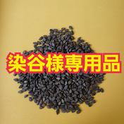 無農薬、無肥料栽培の洗い黒ごま 2kg 染谷様専用 2kg 群馬県 通販