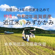 令和2年滋賀県産 みずかかみ約白米5キロ 約5キロ 高島農産(ないとうさん家の野菜)