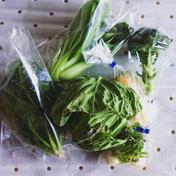 お試し お一人様用 野菜box SSサイズ 5品から6品 愛知県 通販
