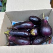 もう少しで送料300円終わっちゃうよなす詰め合わせ 無農薬 2kg 野菜(茄子) 通販