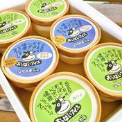 夏にオススメ!ゴールドキウイ・グリーンキウイ・抹茶の3種類のおいしいアイスシャーベット♪ シャーベットは一つ80ml入っています。 乳製品(その他乳製品) 通販