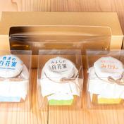 佐賀産はちみつ小瓶3品セット(100g✖3) 100g×3 はちみつ 通販