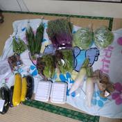市民ひまわり農園のこだわり野菜ミニ詰合せ 7〜8種類を詰め合わせています。 鹿児島県 通販