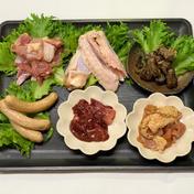 みやざき地頭鶏焼肉パーティセット6種  別途記載  2~3人前 肉(鶏肉) 通販