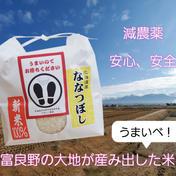 うまいべ農園 令和2年産 ななつぼし 【10キロ】 10キロ