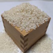 高橋様専用 野菜と無洗米のコシヒカリ2キロ 5キロ以内 埼玉県 通販