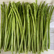 【訳あり】朝採り規格外博多アスパラガス 1kg 1kg 果物や野菜などのお取り寄せ宅配食材通販産地直送アウル