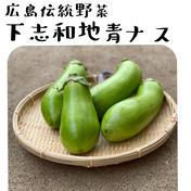 広島伝統野菜!トロ〜リ青ナス。絶品です🤤【大容量】5キロボックス! 5キロ(約15〜17本) 広島県 通販