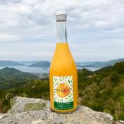 島恵自然農園 【期間限定価格】無添加 柑橘ミックスジュース 100% 720ml ×3本