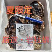 【夏限定】夏と言えば✨岩牡蠣(3キロ箱)✨シーズン到来 岩牡蠣 3キロ箱(カキナイフ・レシピ付) 果物や野菜などのお取り寄せ宅配食材通販産地直送アウル