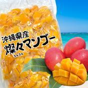 【沖縄県産】冷凍 燦々マンゴー(ダイスカット)【業務用・無添加・保存料不使用】 1kg 果物(マンゴー) 通販