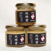 【球磨産】地蜂蜜 非加熱・無添加高濃度日本みつばち蜂蜜 150g x 3瓶 はちみつ 通販