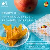 〜宮崎マンゴーをいつでもどこでも気軽に〜MIYAZAKI MANGO Dried〜【ドライマンゴー・送料最安】 12g 果物や野菜などのお取り寄せ宅配食材通販産地直送アウル