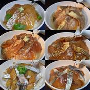 平国丸 瞬間凍結出汁茶漬け 6種セット 70g×6 魚介類(セット・詰め合わせ) 通販