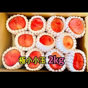桃あかつき 極小小玉 約2kg(11個〜12個) 数量限定‼️ 約2kg(11個〜12個) 果物や野菜などのお取り寄せ宅配食材通販産地直送アウル