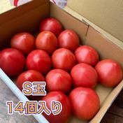 赤熟もぎり!水耕栽培の王様トマト S玉14個  2キロ箱満杯 S玉14個(2キロ箱満杯) 果物や野菜などのお取り寄せ宅配食材通販産地直送アウル