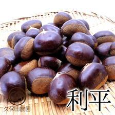 茨城のうまい栗(利平)約1kg(約35個) 約1Kg(約35個) 果物/栗通販