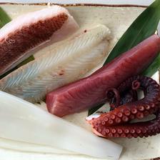 越前ぐみざき定置網産の朝どれ!大将おまかせ鮮魚さくどり2〜3人前 魚介類/セット・詰め合わせ通販