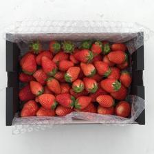 【訳あり900g×2】    群馬県産やよいひめ 1.8kg 果物/いちご通販
