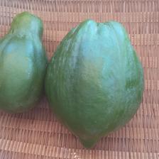 【農カレンダー付き】東京青パパイヤ1キロ(農薬化学肥料不使用) 1キロ 野菜/その他野菜通販