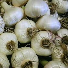 【無農薬】南国高知のにんにく2kg 2㎏ 野菜/にんにく通販